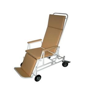 Крісло-каталка комбінована для дорослих КК     IN